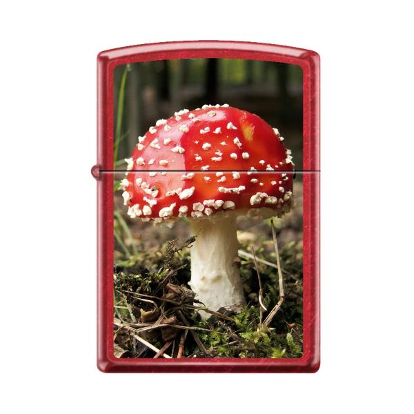 Zippo Lighter - Aminita Mushroom - Candy Apple Red